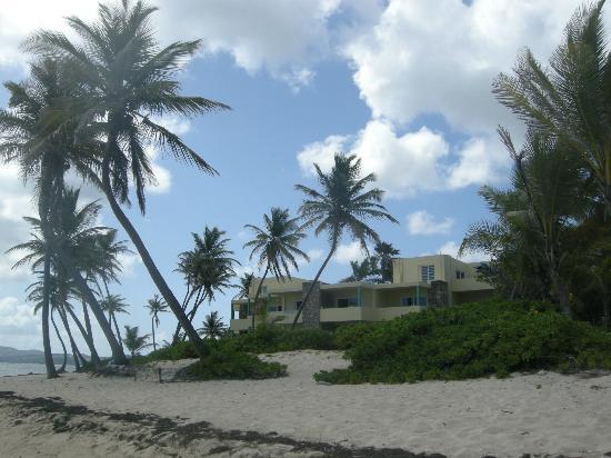 ذا بالمز آت بيليكان كوف: view of hotel from beach 