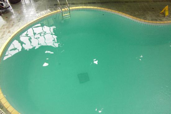 Delta Toronto East: Pool