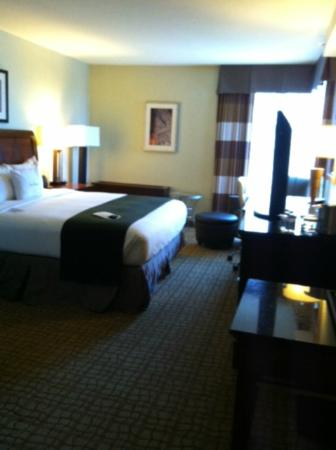 Doubletree Hotel Bethesda: Suite - king