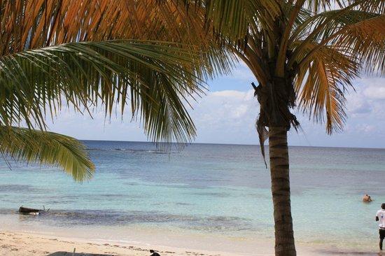 Ryanna Sun: visu de la plage en prenant un apero mamajuana