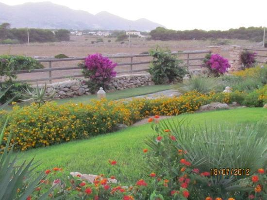 SicilyGate: Il giardino delle Aloe 9