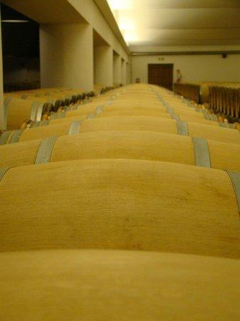 Chateau Ormes de Pez: Barrels full of lovely wine