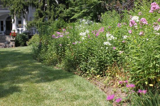 Albemarle Inn: Gardens