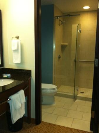 Hyatt Place Chesapeake/Greenbrier: Bathroom
