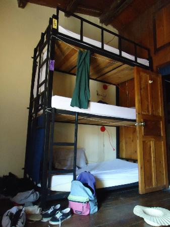 Base Camp Hostel: One of the bunks in the dorm.