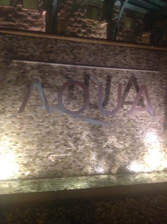 Aqua: Aqua 