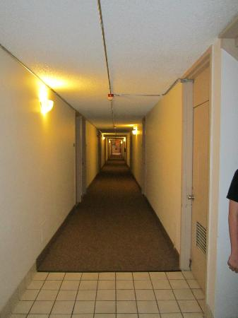 Quality Inn & Suites : Hallway, notice conduit on walls, ceiling