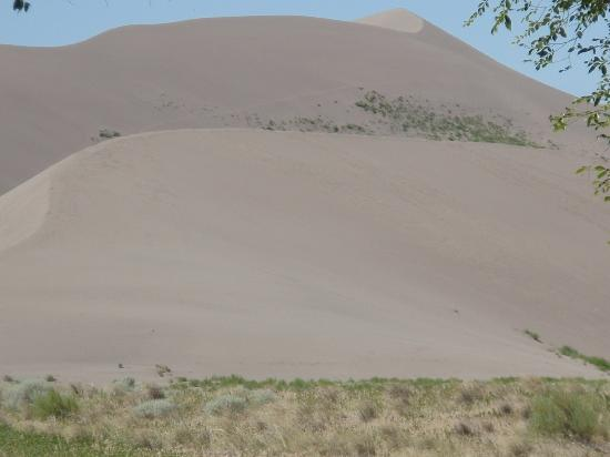 Bruneau Dunes State Park: sand dune