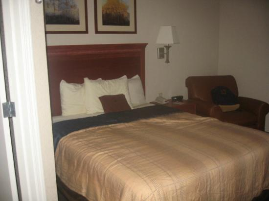 Candlewood Suites Medford : Room 111's bed