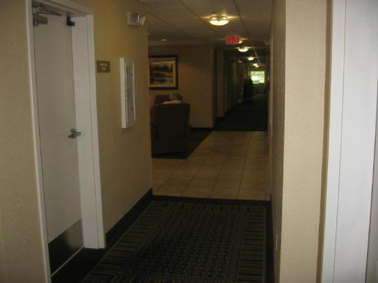 Candlewood Suites Medford: Room 111's view to lobby & front desk door