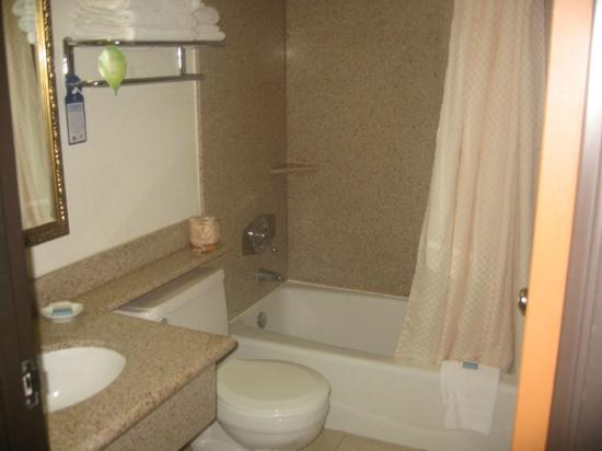 Best Western Antelope Inn & Suites: Bathroom