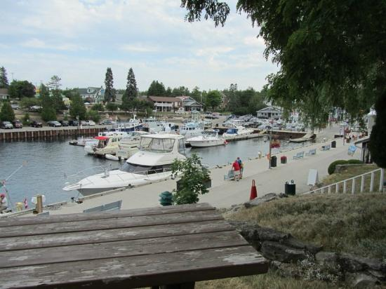 Harbourside Motel: View from outside room(#10)