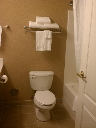 Country Inn & Suites By Carlson, Duluth North: Bathroom