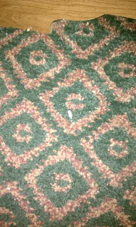 Best Western Benton Inn: a couple of the sunflower seeds left behind by a previous guest. no vacuuming?