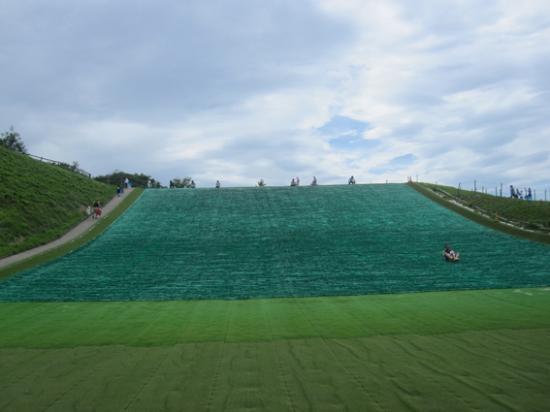 Sodegaura, Japan: 芝そりゲレンデ
