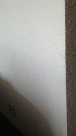 Quality Inn & Suites: Wall scuffs
