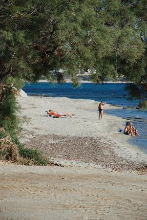 Summerland  Holiday's Resort: The beach - 10 minutes from the hotel