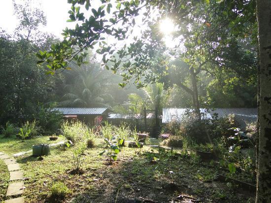 The Kebun: natuur
