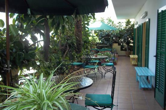 Hostal Valencia: terrasse