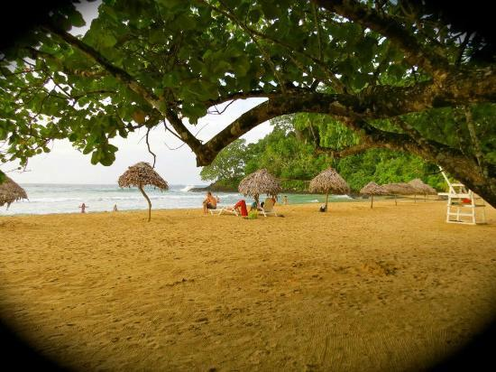 La Loma Jungle Lodge and Chocolate Farm: Red Frog Beach- a nearby beach