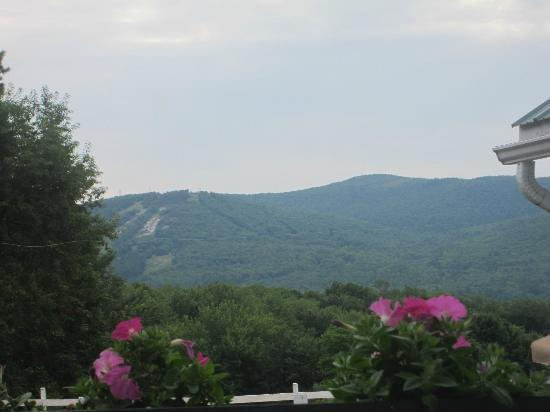 Farm by the River Bed and Breakfast with Stables: The view of Mount Cranmore from my room