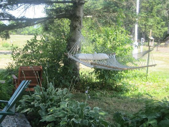 Farm by the River Bed and Breakfast with Stables: The hammock in the garden - view from the breakfast deck