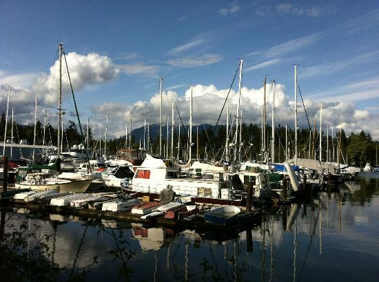 English Bay Inn: Boats on the walk into central Vancouver