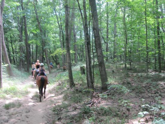 Farm by the River Bed and Breakfast with Stables: On the trail ride