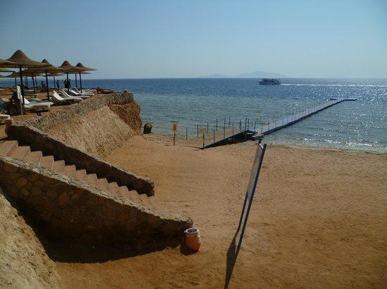 Poinciana Sharm Resort & Apartments 사진