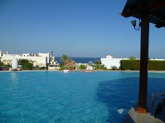 Poinciana Sharm Resort & Apartments: вид из нижнего бассейна