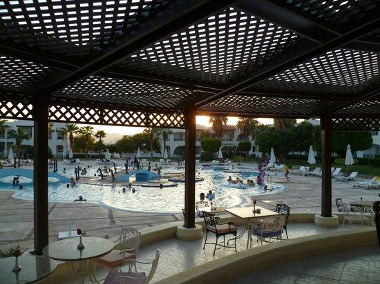 Poinciana Sharm Resort & Apartments: бассейн вечером. Много арабов (арабки в одежде)