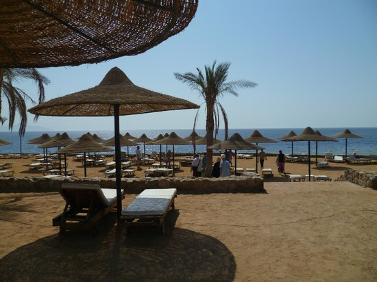 Poinciana Sharm Resort & Apartments: пляж