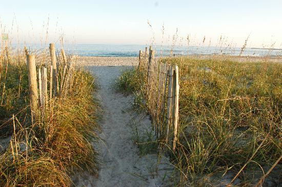 Wilmington, Kuzey Carolina: Island Beach Access
