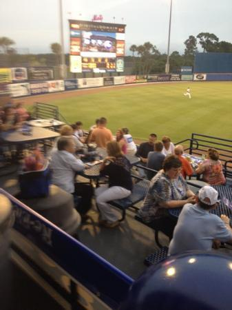 Tradition Field: Left field picnic area.