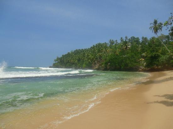 Club Mirissa Villas & Hotels: Mirissa beach