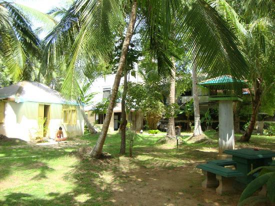 Club Mirissa: Garden