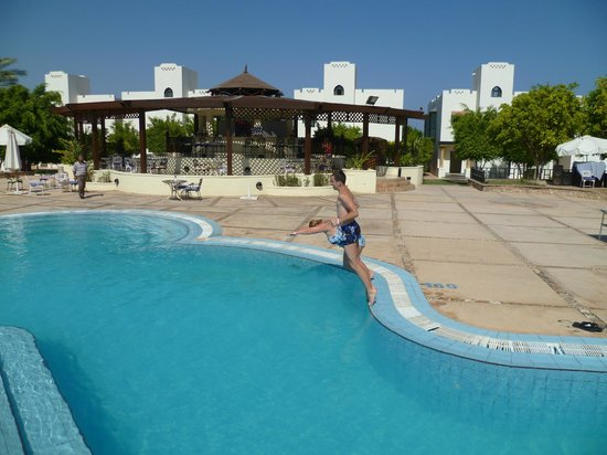 Poinciana Sharm Resort & Apartments: бассейн