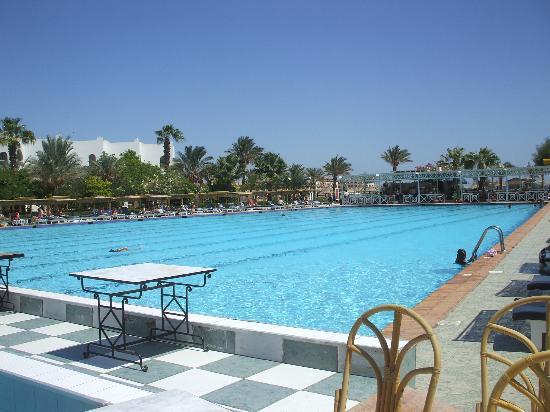 Arabia Azur Resort: Pool