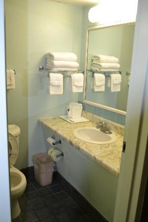 Howard Johnson Inn -Sandusky Park N Entrance: Spacious and Clean Bathrooms!