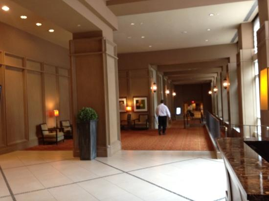 Lansdowne Resort and Spa : lobby
