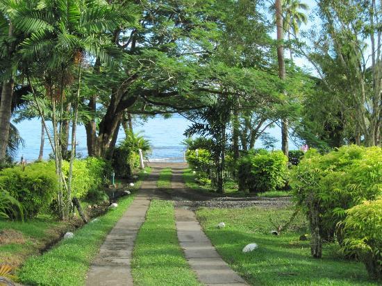 Daku Resort: Daku's front drive