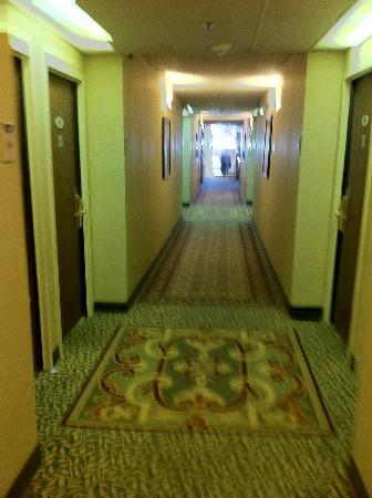 Doubletree Dallas Near the Galleria: Corridor leading to rooms