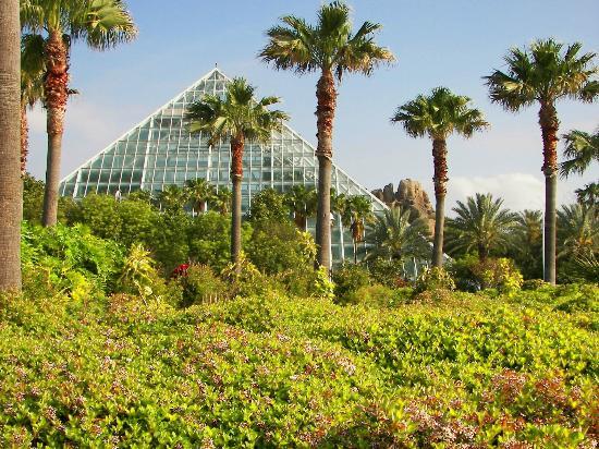 Grounds Picture Of Moody Gardens Galveston Tripadvisor