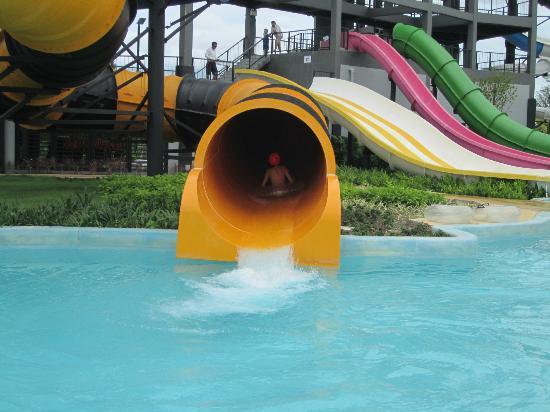 Black Mountain Water Park: Slides