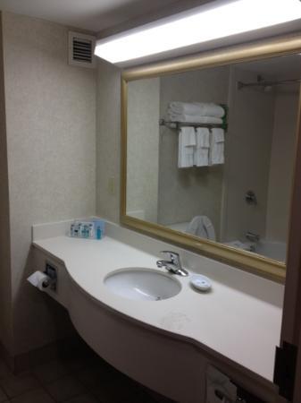 Hampton Inn & Suites Springfield - Southwest: bath