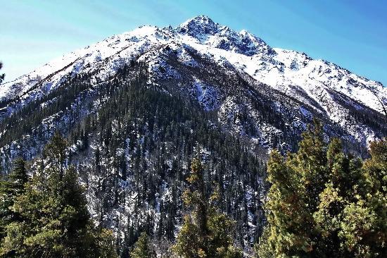 Rakcham : Snow Covered Mountains