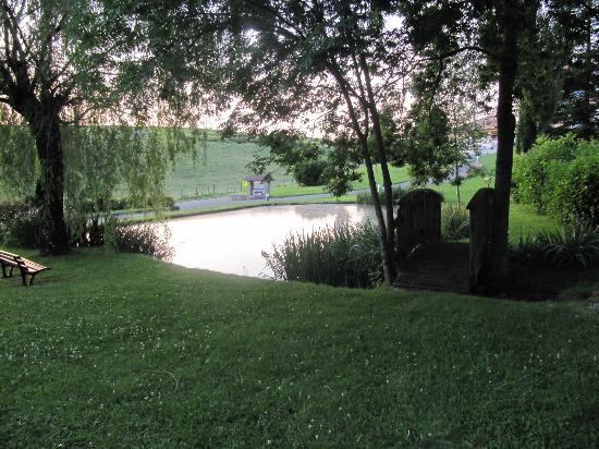 Domaine du Revermont: petit étang