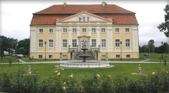 Palac Henrykow: Pałac