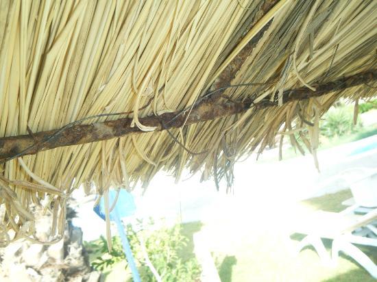 Hotel Shalimar : Fils de fer sous les parasols (attention aux yeux)