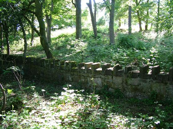 Stone fence, Caldy Hills.